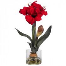 20 in. Amaryllis with Vase