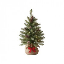 24 in. Indoor Pre-Lit Snowy Dunhill Fir Tabletop Tree with Clear Lights