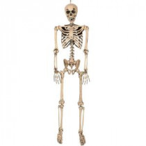 Full-Sized Pose and Stay Skeleton